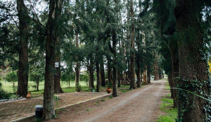 Complejo La Grulla, Cabaña en Chascomús